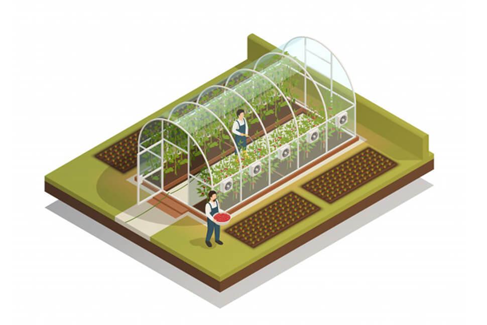 Organic Food Production