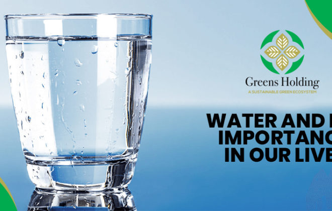 Water And Its Importance In Our Lives